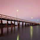Dusk..for Jessica. Wellington Point Qld Australia by Beth  Wode