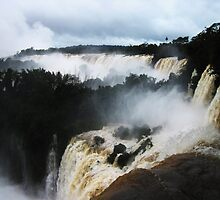 Roaring Falls by Kenji Ashman