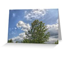 Painting the Sky Greeting Card
