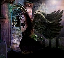 Dark Angel by pattipics