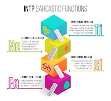 INTP Sarcastic Functions Photographic Print