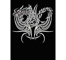 fly dragon Photographic Print