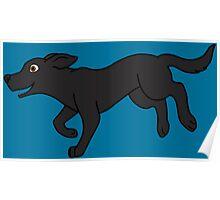 Black Labrador Retriever Running Poster
