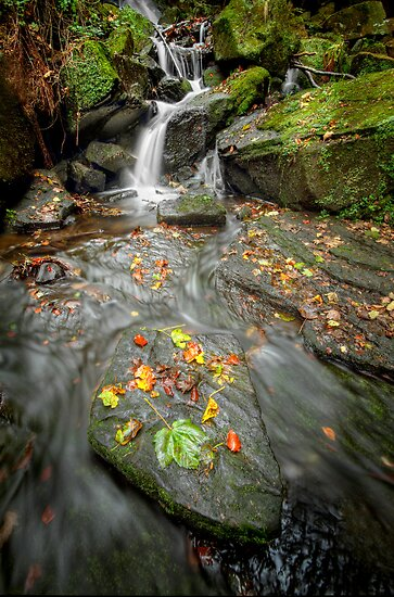Autumn Waterfall by Patricia Jacobs CPAGB LRPS BPE3