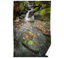 Autumn Waterfall Poster