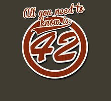 All you need to know is 42 Unisex T-Shirt
