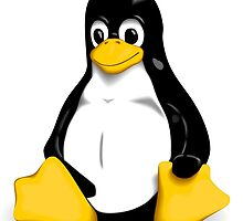 Linux by curro