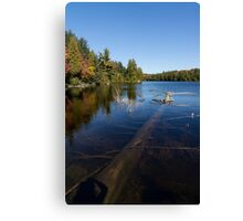 Of Fall and Fallen Giants - Take Two Canvas Print