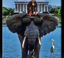 The Tourist by Richard  Gerhard