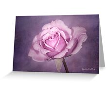 Tinted Rose with Textured Background Greeting Card