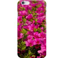 Garden flower box of petunias iPhone Case/Skin