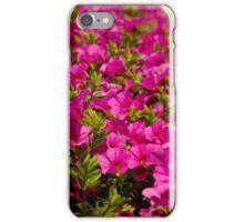 Garden flower box of petunias iPhone Case/Skin