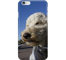 Dog with head out window iPhone Case/Skin