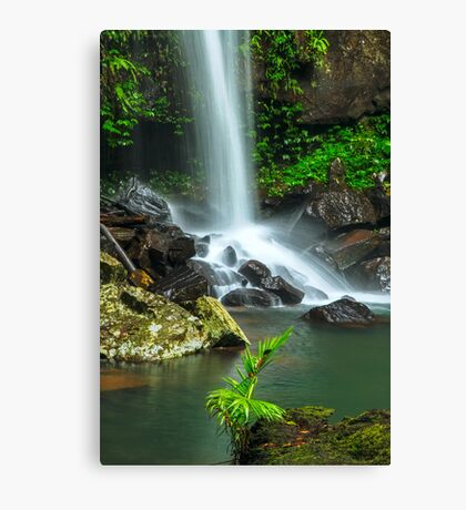 Droplets of Life Canvas Print