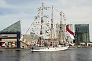 Arrival of the Dewaruci by WalnutHill