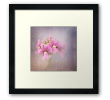 Pastels and Texture Framed Print