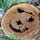 Sawed Off Smiley Log by ingridthecrafty