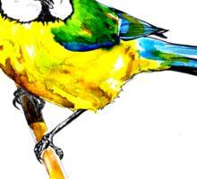 Little Bird Sticker