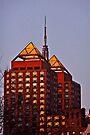 EMPIRE SYRINGE BUILDING by cammisacam