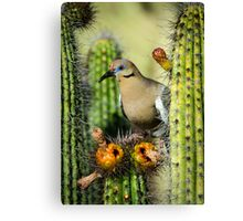 Nature's Nectar  Canvas Print