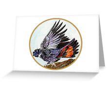 Black Cockatoo, Birds of Hepburn, 2011 Greeting Card