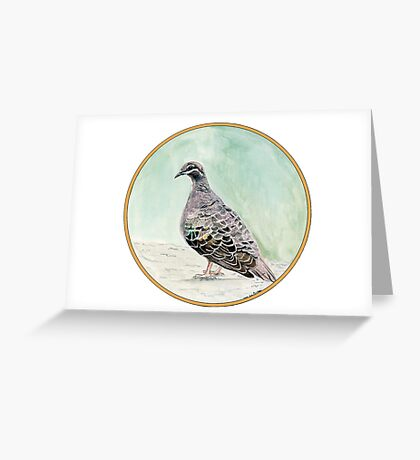 Bronze Winged Pigeon, Birds of Hepburn, 2011 Greeting Card