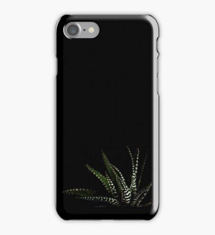 Haworthia Aloe Vera cactus succulent plant white spots iPhone Case/Skin