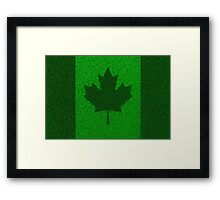 Grass flag Canada Framed Print
