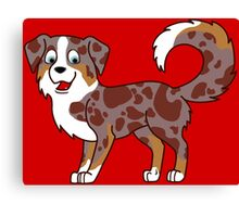 Red Merle Australian Shepherd Canvas Print