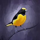 Euphonia by freeminds