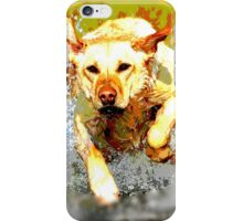 Wild nature - dog iPhone Case/Skin