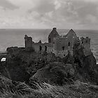 Dunluce Castle, Northern Ireland by SMCK