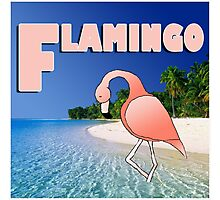 Alphabet ZOO - FLAMINGO Photographic Print