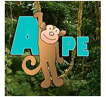 Alphabet ZOO - APE Photographic Print