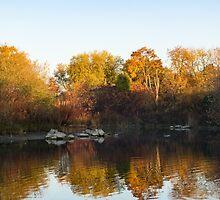 Dreamy Autumn Reflections by Georgia Mizuleva