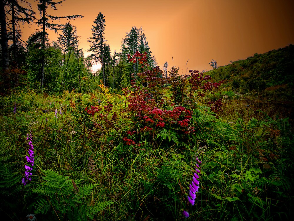 Red, Gold, and Green by Charles & Patricia   Harkins ~ Picture Oregon