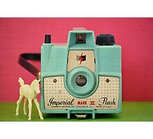 Favorite Things: Imperial Horse Photographic Print