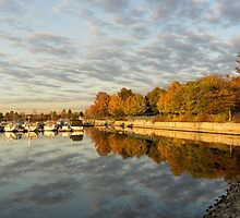 Autumn Splendor at the Marina by Georgia Mizuleva