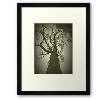 Witches Tree Framed Print