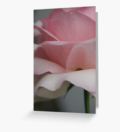 Zarte Liebe Greeting Card