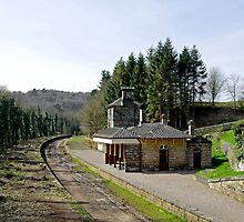 The Disused Alton Towers Railway Station  by Rod Johnson