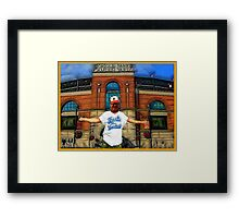 YANKEE HATERS ONLY -BALTIMORE ORIOLES  Framed Print