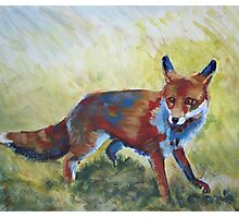Fox Painting Photographic Print
