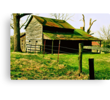 Ole Mossy Roof Canvas Print