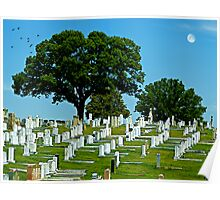 A lovely day at Greenwood Cemetery Poster