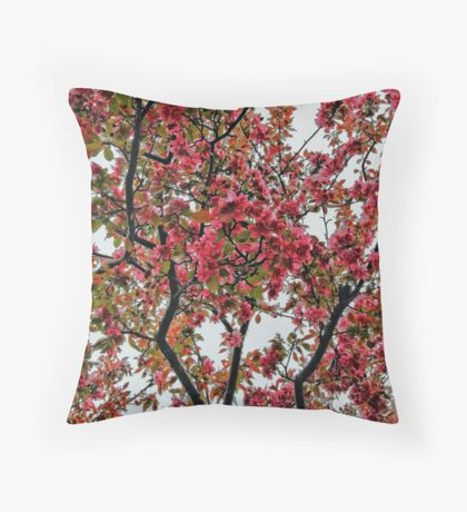 Apple Blossoms - Cloudy Day Throw Pillow