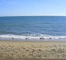 beach scene by pauladolphins