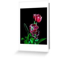 Tulip Portrait. Greeting Card