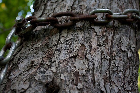 Chained Tree by mursaydeees