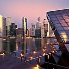 The Esplanade Singapore by DIZZYHEIGHTS